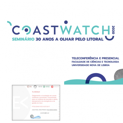 The To-SEAlert project was presented at the Coastwatch 2020 seminar.